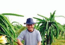 Menekuni bidang pertanian dengan kekuatan cinta.