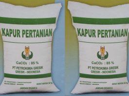 Menyediakan unsur Ca (kalsium) yang dibutuhkan untuk ganti kulit udang.