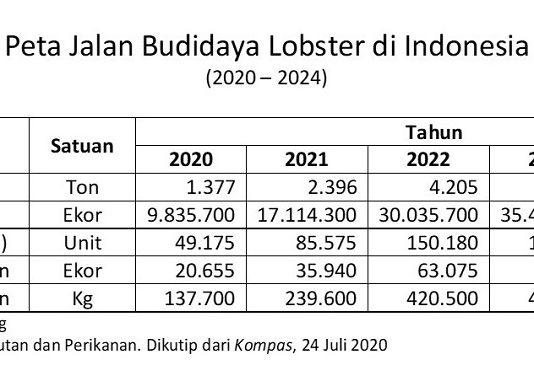 Pelepasliaran ini dimaksudkan untuk menjaga kelestarian atau keberlanjutan populasi lobster di Indonesia.