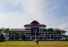 Kontribusi pertanian, kehutanan, dan perikanan terhadap PDRB Kabupaten Bengkulu Selatan tahun 2019 sekitar 32,60%.