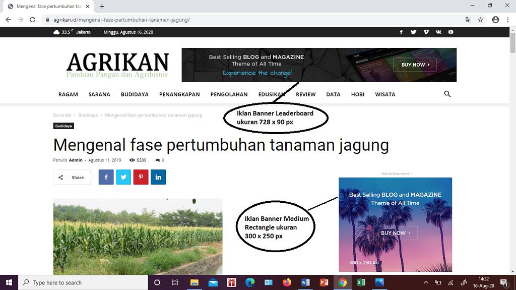 Iklan banner leaderboard dan iklan medium rectangle di blog agrikan.id.
