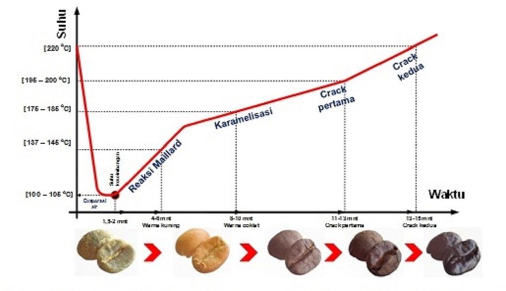 Grafik suhu dan waktu penyangraian biji kopi.
