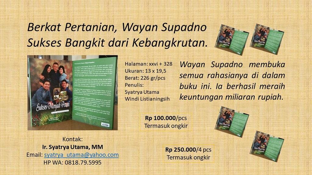 Berkat pertanian, Wayan Supadno sukses bangkit dari kebangkrutan.