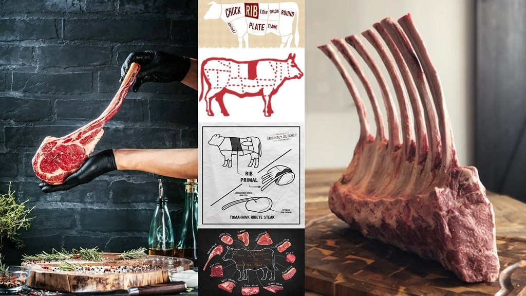 Sumber potongan daging sapi tomahawk dari daging dan tulang rusuk.