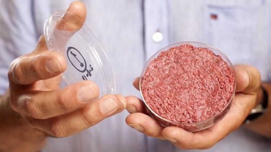 Secara biologi, daging kultur ini mirip daging sapi konvensional. Pembuatannya tanpa rekayasa genetik, hanya memperbanyak jaringan otot di bioreaktor.