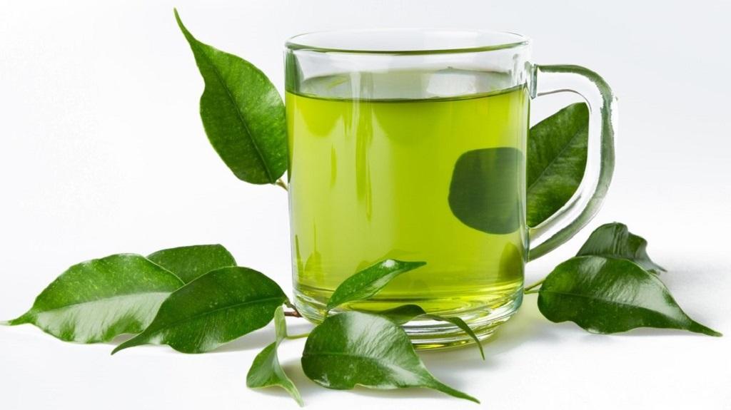 Banyak manfaat minum teh hijau setiap hari.