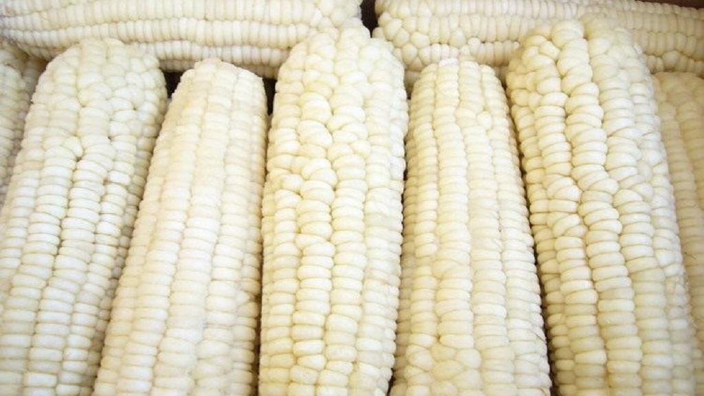 Pati jagung ketan dan pati termodifikasi banyak dimanfaatkan karena sifat-sifatnya yang khas (viskositas, stabilitas panas, dan pH).