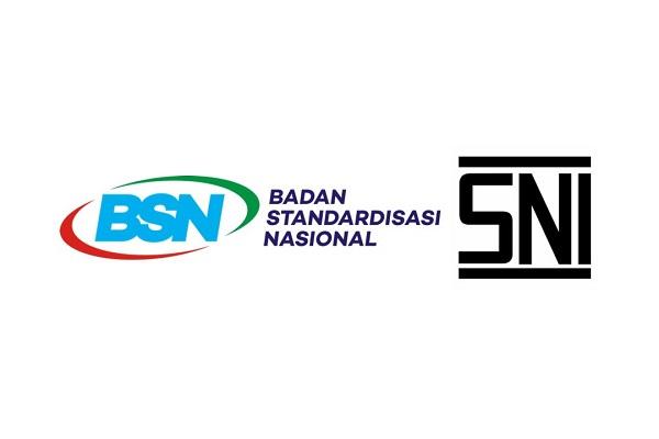 Badan Standardisasi Nasional sudah berhasil mengupayakan beberapa SNI menjadi standar internasional seperti SNI Mi Instan yang diterima oleh Codex, SNI Tempe Kedelai, Tepung Sagu, Lada Hitam, Lada Putih, Pala, dan Bawang Merah.