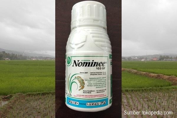 Cara aplikasi herbisida Nominee 103 OF untuk mengendalikan gulma padi sawah.