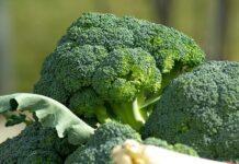 Brokoli mengandung vitamin A, C, E, serat, dan antioksidan, yang dapat memperkuat sistem imun tubuh.